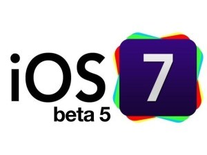 beta 5 launch