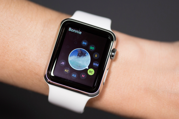 apple watch app development kit